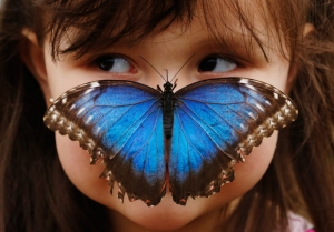 img_pod_butterfly-little-girl-2603-RTXXX1T
